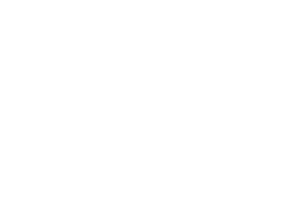 Markusdamini